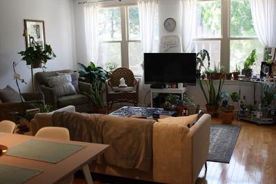 Brookline Rental For Rent: 20 Webster Street #211