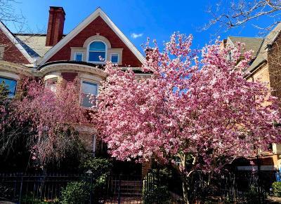 Brookline Condo/Townhouse New: 1756 Beacon St #1