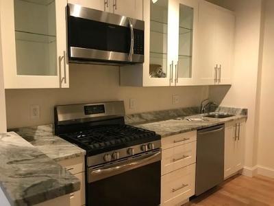 Brookline Rental New: 672 Washington Street #2