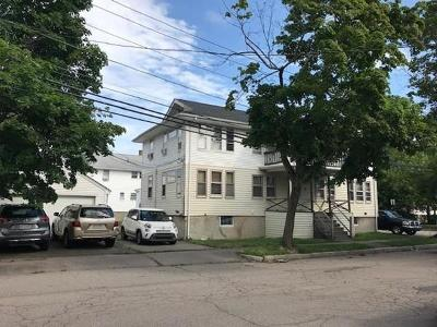 Quincy Multi Family Home New: 47 Wilson Avenue