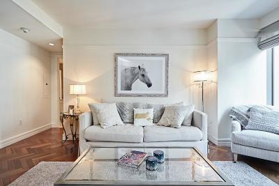 Boston Rental New: 1 Avery Street #10E