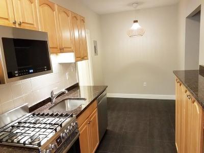 Boston Rental New: 22 Chiswick Road #1