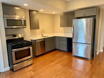 Boston Rental New: 189 Princeton #3