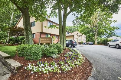 Belmont Condo/Townhouse New: 19 Burnham Street #C1
