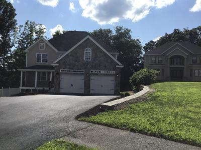 Worcester Single Family Home For Sale: 46 Rustic Dr Ext