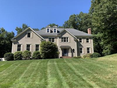 Natick Single Family Home For Sale: 35-A South Street