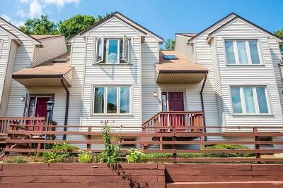 Foxboro Condo/Townhouse For Sale: 41 Elm St #C3