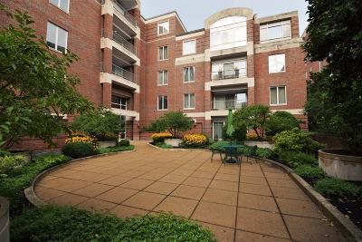 Cambridge Rental For Rent: 130 Mount Auburn St #406