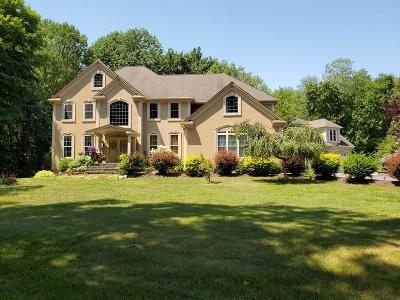 Thompson Single Family Home For Sale: 36 Tuft Hill Rd