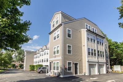 Cambridge Rental For Rent: 316 Rindge Ave #9