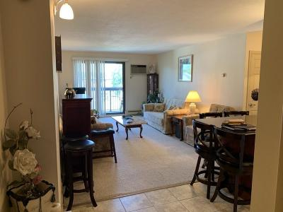Watertown Condo/Townhouse For Sale: 10 Williams St #49