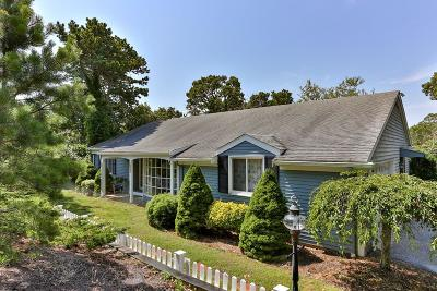 Chatham Single Family Home For Sale: 323 Riverview Drive
