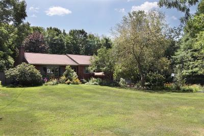 Northbridge Single Family Home For Sale: 384 Benson Rd