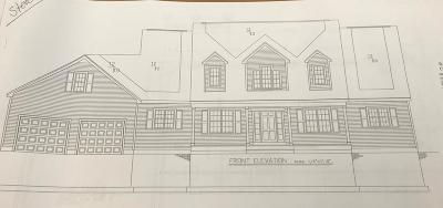 Foxboro Single Family Home For Sale: 6 Vandoorn Avenue