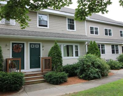 Westborough Condo/Townhouse For Sale: 6 Mayberry Dr #B