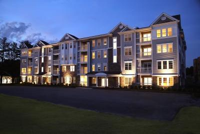 Andover Condo/Townhouse For Sale: 459 (459 River Road) 4201 #201