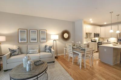 Andover Condo/Townhouse For Sale: 459 River Rd (Unit 4103) #103