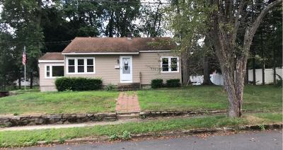 Palmer Single Family Home For Sale: 15 Sasur St
