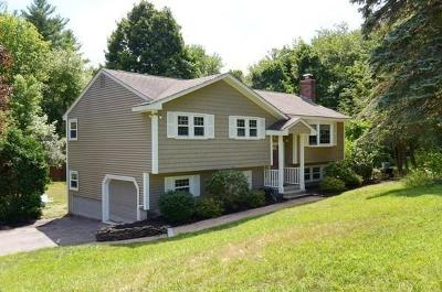 Tewksbury Single Family Home For Sale: 95 William G Dr