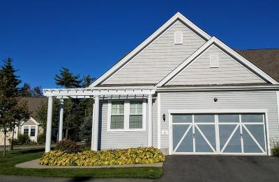 Canton Condo/Townhouse For Sale: 9 Iris Ct #9