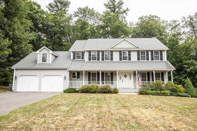 Palmer Single Family Home For Sale: 26 Homestead Street