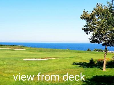 Plymouth Condo/Townhouse For Sale: 42 Cliffside Dr #42