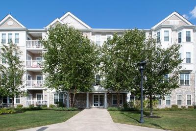 Braintree Condo/Townhouse For Sale: 418 John Mahar Hwy #204