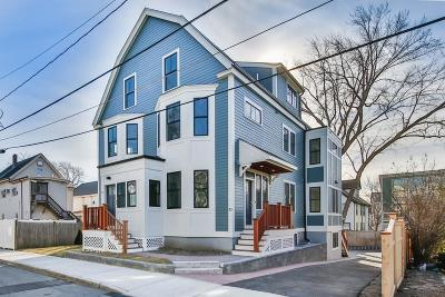 Somerville Condo/Townhouse New: 10 Appleton Street #10