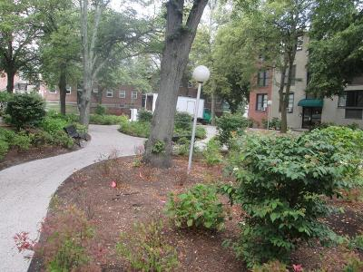 Brookline Condo/Townhouse For Sale: 28 Juniper Street #83