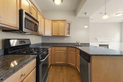 Somerville Condo/Townhouse New: 390 Washington Street #2