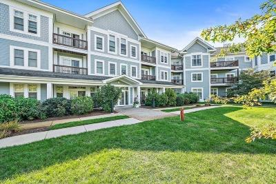 Braintree Condo/Townhouse New: 501 Commerce Dr #4212