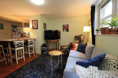 Brookline Rental New: 15 Wellman St #1