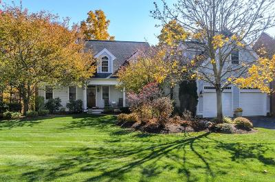 Natick Single Family Home New: 12 Davis Brook Dr #12