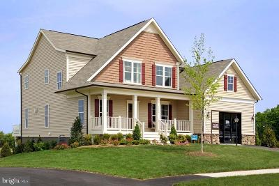 Prince William County, Fairfax County, Fredericksburg City, Fauquier County Single Family Home For Sale: Brightstar Drive