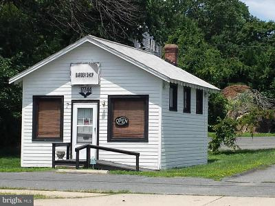 Dumfries Commercial For Sale: 17744 Main Street