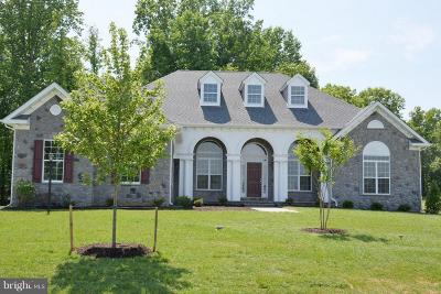 Prince Georges County Single Family Home For Sale: 15501 Over Land Court