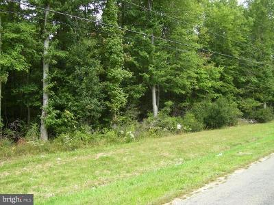 Centreville Residential Lots & Land For Sale: 217 Brownsville Road