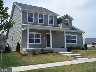Stevensville Single Family Home For Sale: 3 Conor Drive