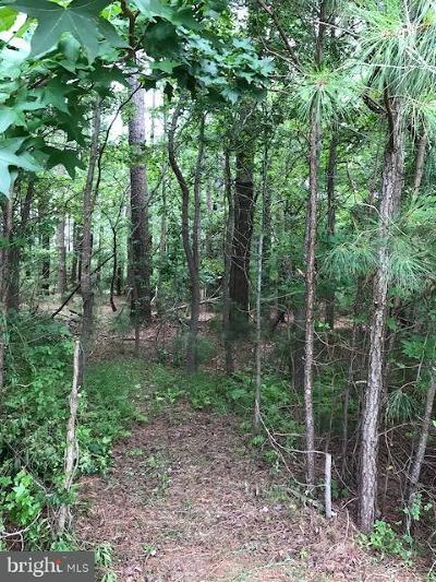 Worcester County, WORCESTER COUNTY Residential Lots & Land For Sale: 116 Pine Forest Drive