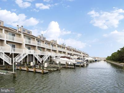 Ocean City Townhouse For Sale: 2802 Tern Drive #10501