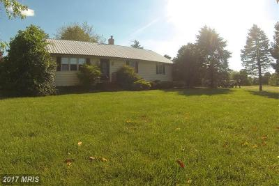 Talbot County Farm For Sale: 32025 Flowers Road