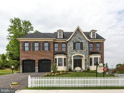 Clarksburg Single Family Home For Sale: 22001 Winding Woods Way