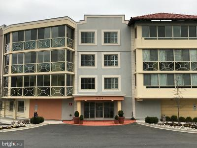 Silver Spring Condo Under Contract: 15000 Pennfield Circle #T-1