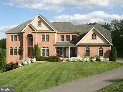 Gaithersburg Single Family Home For Sale: 25103 Highland Manor Court