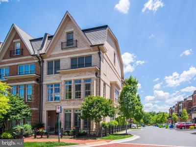 North Bethesda Townhouse For Sale: 10887 Symphony Park Drive