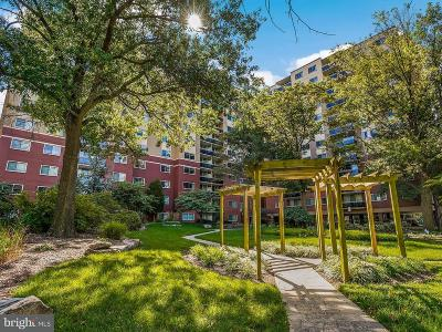 Takoma Park Townhouse For Sale: 7333 New Hampshire Avenue #1019