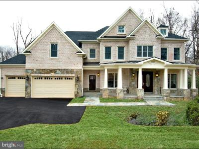 Falls Church Single Family Home For Sale: 3445 Gallows Road