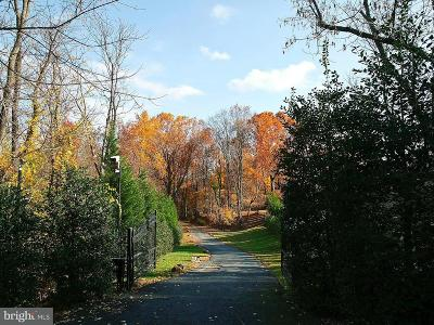 Residential Lots & Land For Sale: 670 Chain Bridge Road