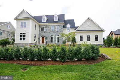 Fairfax County Single Family Home For Sale: 891 Georgetown Ridge Court