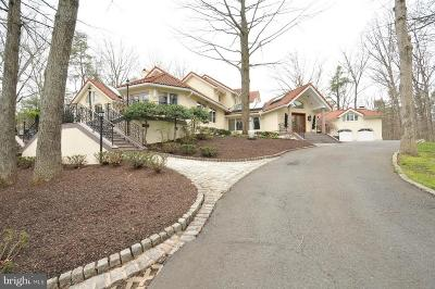 Vienna Single Family Home For Sale: 2094 Hunters Crest Way